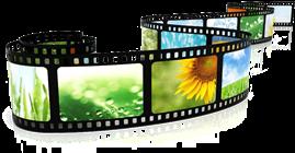 Vign_film_all